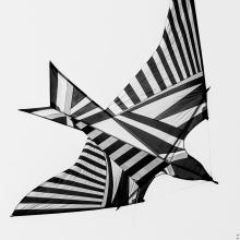 la forma del vento